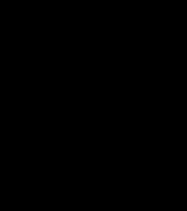 Plan schématique de l'abbaye de Grandselve.